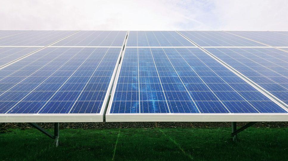 Fundacja Frank Bold prowadzi nabór na stanowisko                         PRAWNIKA ds. Energii i Klimatu